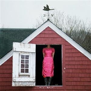 weather vane self portrait by cig harvey