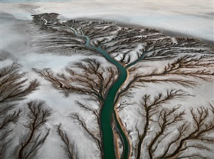 colorado river delta #2, near san felipe, baja, mexico by edward burtynsky
