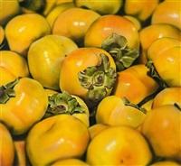 persimmons by ben schonzeit