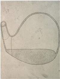 untitled iii (state 2) by martin puryear