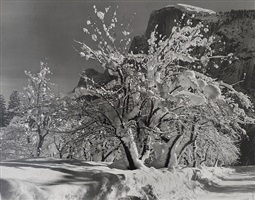 half dome, orchards, winter, yosemite national park by ansel adams