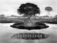 untitled (floating trees) by jerry uelsmann