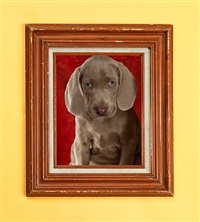 frame work by william wegman
