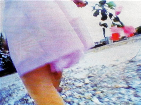 knie mit rose by pipilotti rist