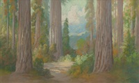 redwoods by carl sammons