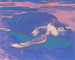 turtle diary by andy warhol