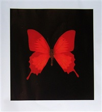souls on jacob's ladder take their flight (large red) by damien hirst
