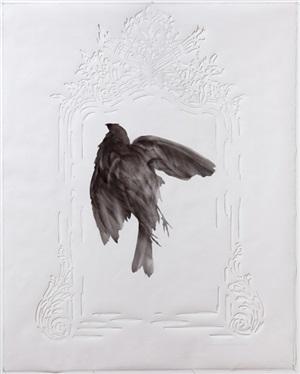 black bird/white mirror by james drake