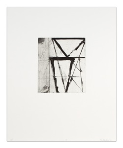 apparent forms by brice marden