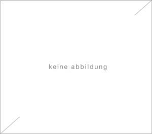 ohne titel (elch) by sigmar polke