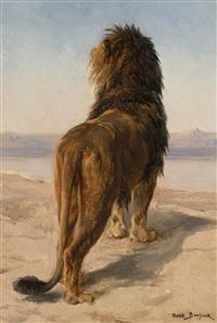 lion d'afrique by rosa bonheur