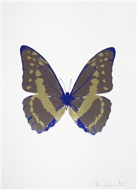 the soul iii - gunmetal, cool gold, westminster blue by damien hirst