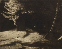 the path in the woods by josef sudek