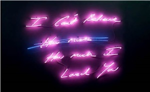 i can't believe (how much) how much i loved you by tracey emin