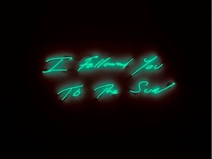 i followed you to the sun by tracey emin