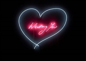 wanting you by tracey emin