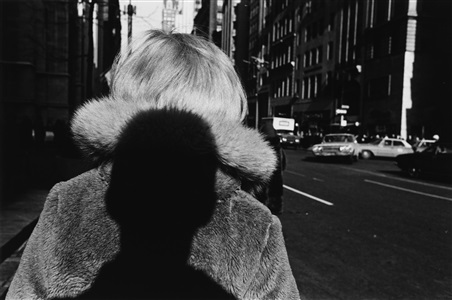 double elephant 1973-74 by lee friedlander