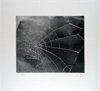spider-web by vija celmins