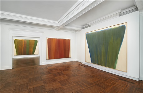 morris louis veils by morris louis