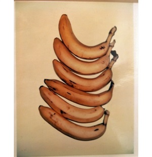 bananas by andy warhol