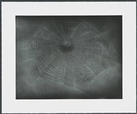 untitled (web 3) by vija celmins