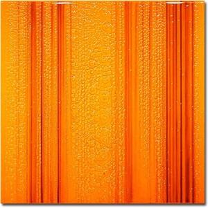 brilliant orange by sand t kalloch