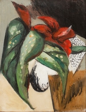 plant forms/red calla by walt kuhn