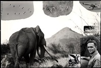 the last of the big tuskers (c. 148 lb. per side)(ref: 2097) by peter beard