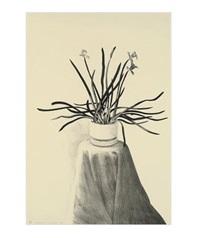 potted daffodils by david hockney