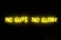 no guts no glory by ruby anemic