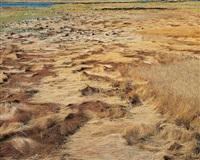 golden marsh grasses, maine by christopher burkett