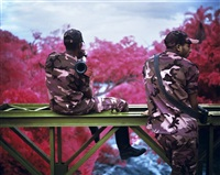 peace attack, virunga national park, north kivu by richard mosse