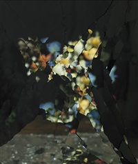on reflection, material e11: after j. brueghel the elder by ori gersht