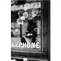 le chat du fleuriste by brassaï