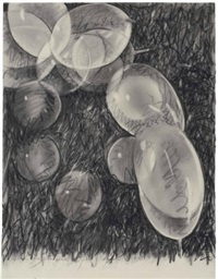 study for star sack by james rosenquist
