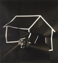 dog house by william wegman