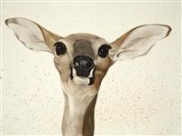 gluskap and the deer by scott kelley