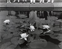 the lily pond, seven springs, mt. kisco by edward steichen