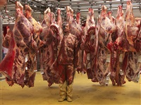 hide in france - 13, meat factory by liu bolin