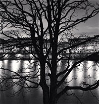 tree, seine and quai voltaire, paris, france, 2013 by michael kenna