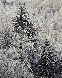 snowy quartz creek mountainside, oregon by christopher burkett