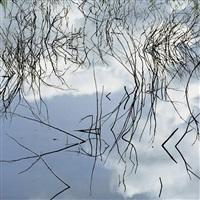 sticks, water, sky, colorado by christopher burkett