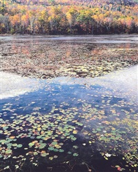 summer lake, maine by christopher burkett