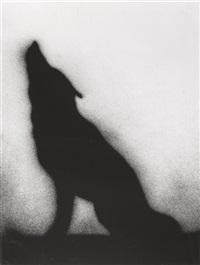 coyote by ed ruscha