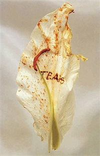 fragility series - tears by anne and patrick poirier