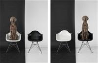 left right black white by william wegman