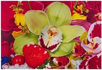 polymayas in the arctic by marc quinn