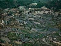 rice terraces #5, western yunnan province, china by edward burtynsky