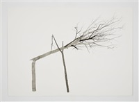 drawing for symbiosis by roxy paine