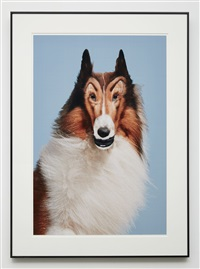 reconstructed lassie by john waters
